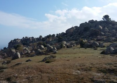 1 Ruta Pictórica Alta Zarzalejo