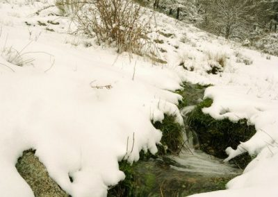 nevada-en-zarzalejo-4