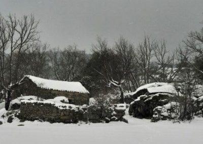 nevada-en-zarzalejo-8